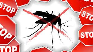 mosquito treatment